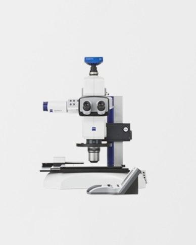 axio zoom microscopi digitali zeiss milano systems