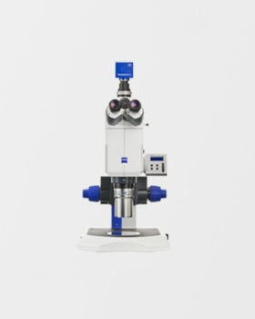 axio zoom microscopi digitali zeiss